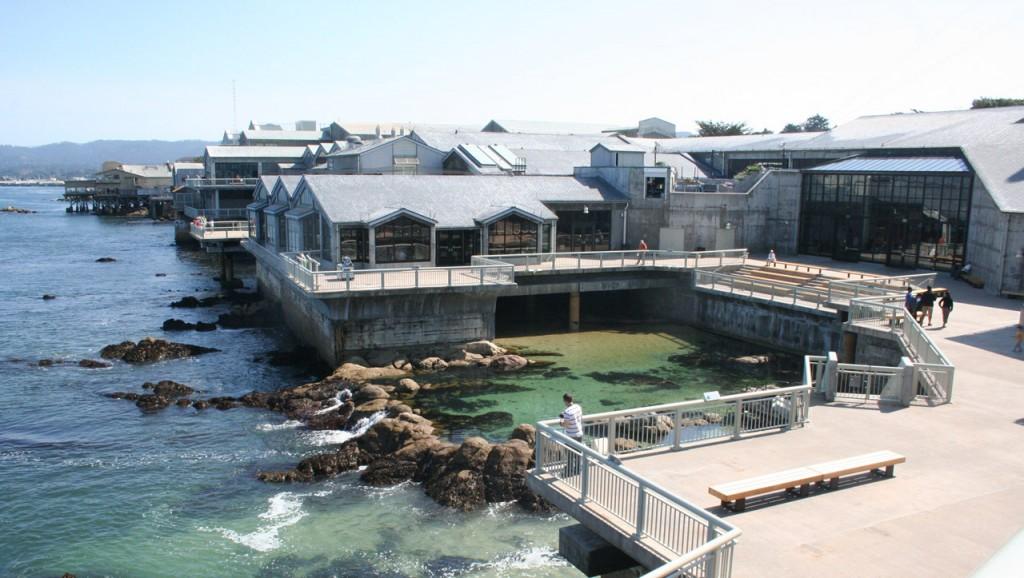 Der Außenbereich des Monterey Bay Aquariums (Foto: Christian Hinze)